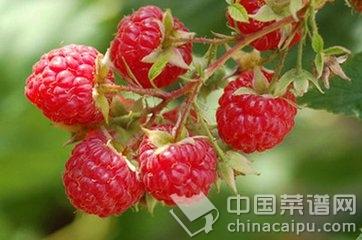 树莓.jpg