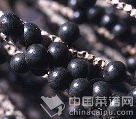 巴西紫莓.jpg